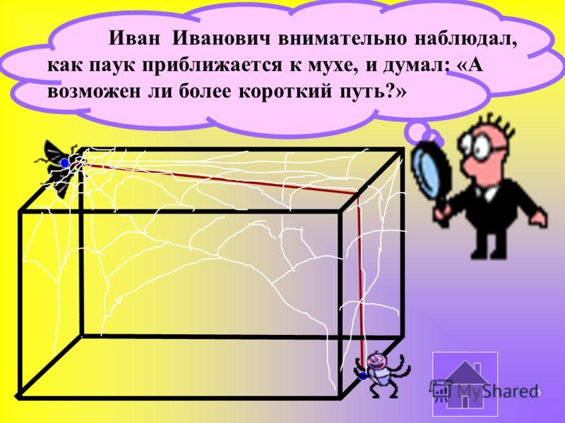 Иван Иванович внимательно наблюдал, как паук приближается к мухе, и думал: «А возможен ли более короткий путь?» 5