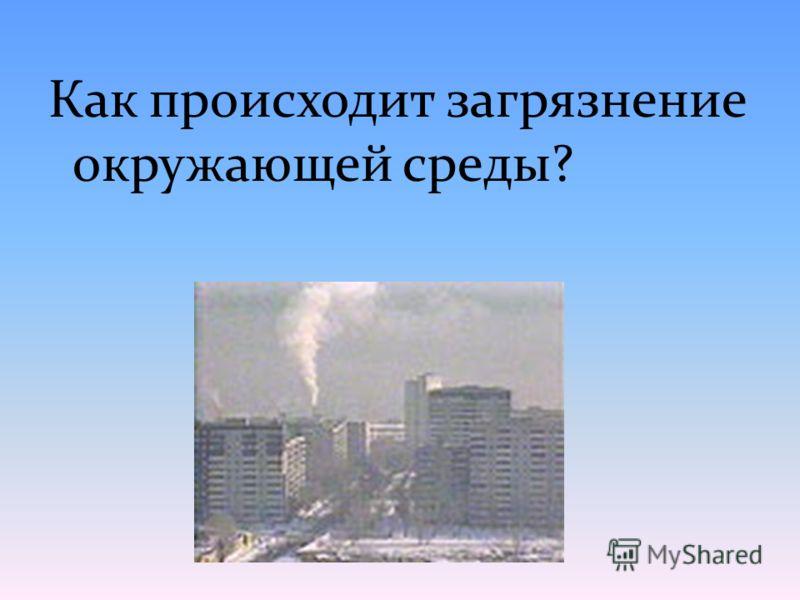 Как происходит загрязнение окружающей среды?