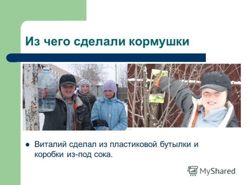 Из чего сделали кормушки Виталий сделал из пластиковой бутылки и коробки из-под сока.