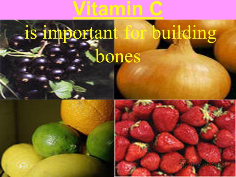 Vitamin C is important for building bones
