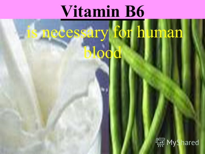 Vitamin B6 is necessary for human blood