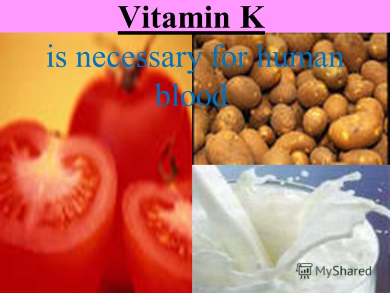 Vitamin K is necessary for human blood