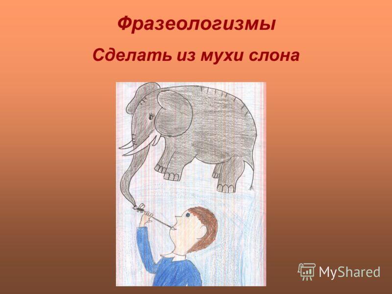 Фразеологизмы Сделать из мухи слона