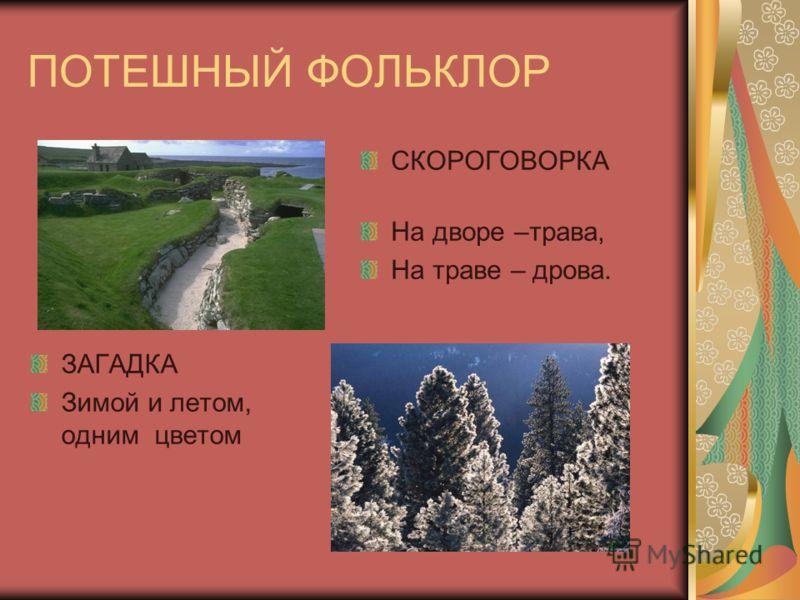 ПОТЕШНЫЙ ФОЛЬКЛОР СКОРОГОВОРКА На дворе –трава, На траве – дрова. ЗАГАДКА Зимой и летом, одним цветом