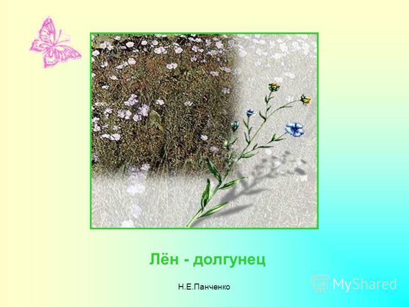 Н.Е.Панченко Лён - долгунец