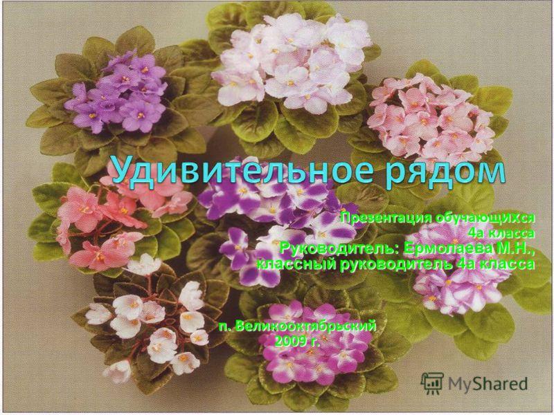Презентация обучающ их ся 4а класса 4а класса Руководитель: Ермолаева М.Н., классный руководитель 4а класса п. Великооктябрьский 2009 г.