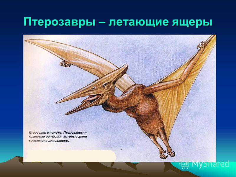 Птерозавры – летающие ящеры
