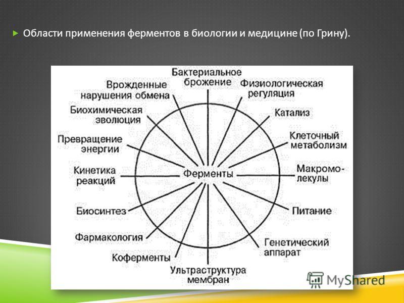 Области применения ферментов в биологии и медицине ( по Грину ).