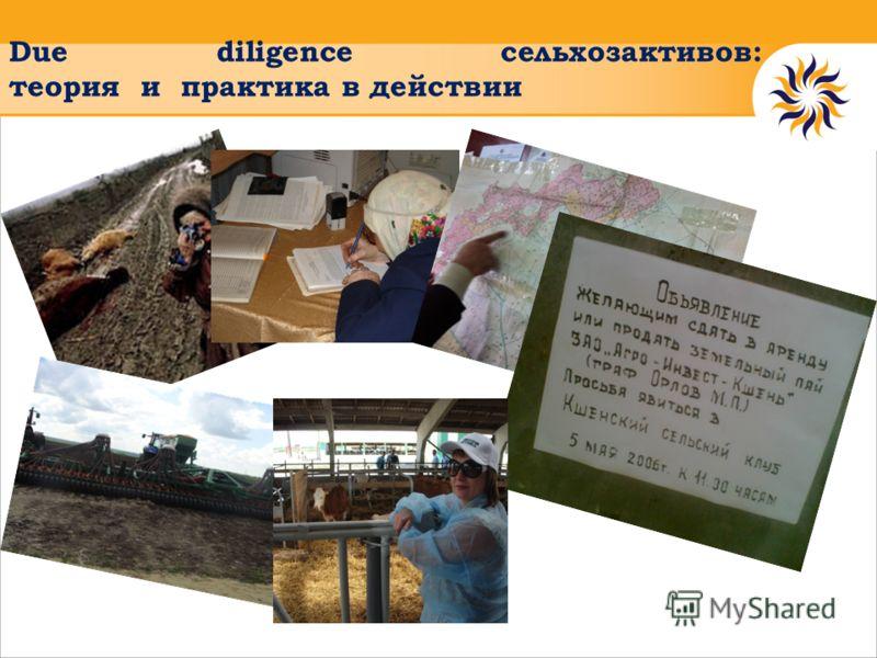 Due diligence сельхозактивов: теория и практика в действии