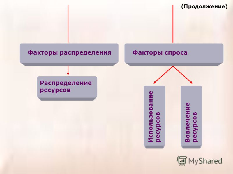 Факторы распределения Распределение ресурсов Факторы спроса Вовлечение ресурсов Использование ресурсов (Продолжение)