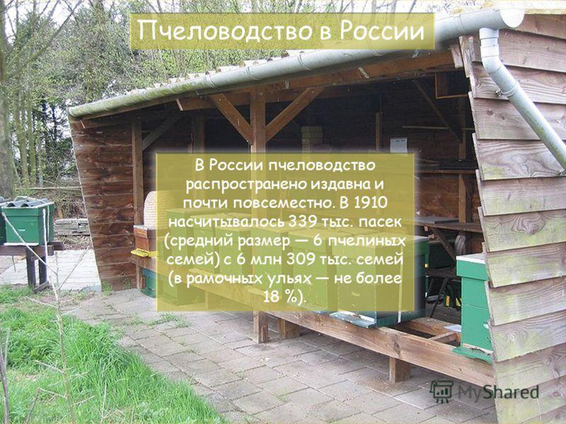 В России пчеловодство распространено издавна и почти повсеместно. В 1910 насчитывалось 339 тыс. пасек (средний размер 6 пчелиных семей) с 6 млн 309 тыс. семей (в рамочных ульях не более 18 %). Пчеловодство в России