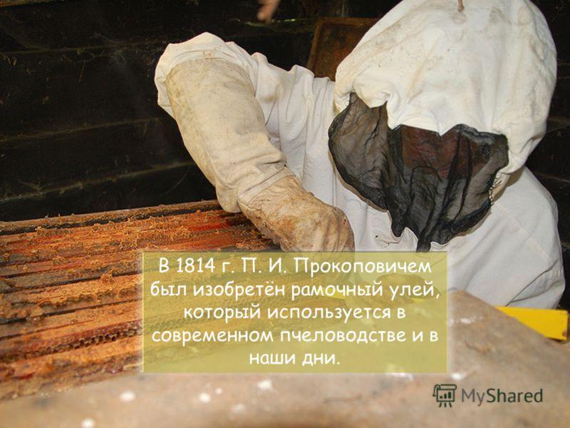 В 1814 г. П. И. Прокоповичем был изобретён рамочный улей, который используется в современном пчеловодстве и в наши дни.
