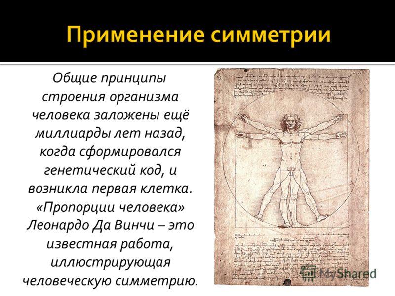 Общие принципы строения организма человека заложены ещё миллиарды лет назад, когда сформировался генетический код, и возникла первая клетка. «Пропорции человека» Леонардо Да Винчи – это известная работа, иллюстрирующая человеческую симметрию.