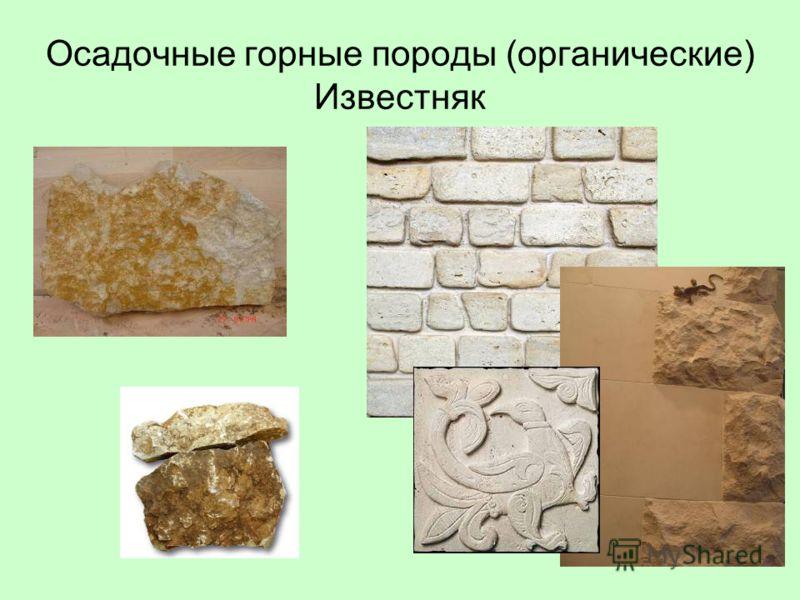 Осадочные горные породы (органические) Известняк