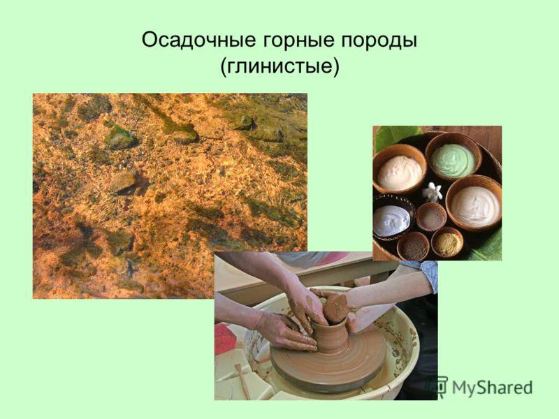 Осадочные горные породы (глинистые)