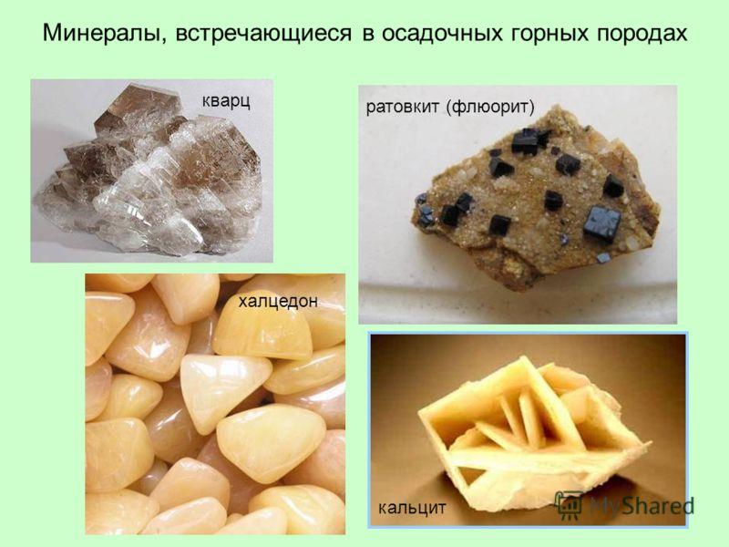 Минералы, встречающиеся в осадочных горных породах кварц халцедон ратовкит (флюорит) кальцит
