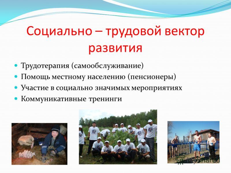Социально – трудовой вектор развития Трудотерапия (самообслуживание) Помощь местному населению (пенсионеры) Участие в социально значимых мероприятиях Коммуникативные тренинги