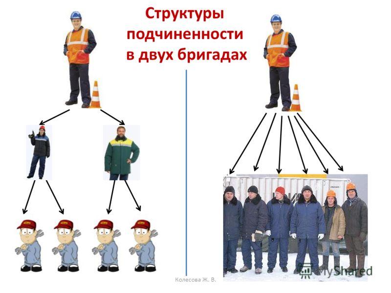 Структуры подчиненности в двух бригадах Колесова Ж. В.