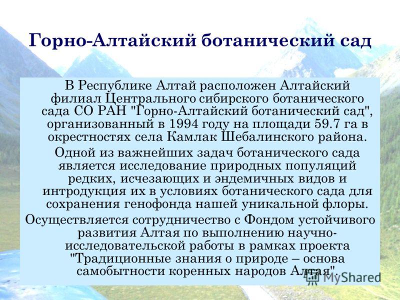 Горно-Алтайский ботанический сад В Республике Алтай расположен Алтайский филиал Центрального сибирского ботанического сада СО РАН