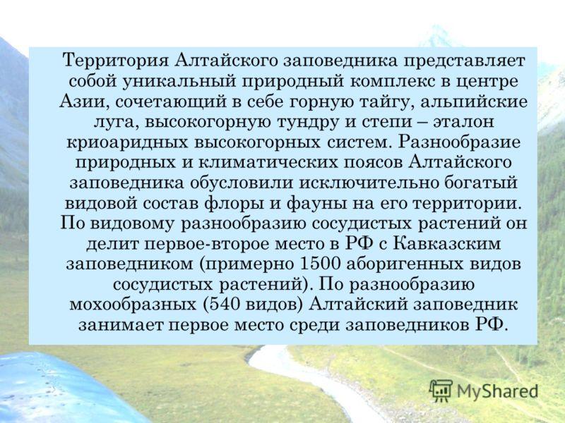 Территория Алтайского заповедника представляет собой уникальный природный комплекс в центре Азии, сочетающий в себе горную тайгу, альпийские луга, высокогорную тундру и степи – эталон криоаридных высокогорных систем. Разнообразие природных и климатич