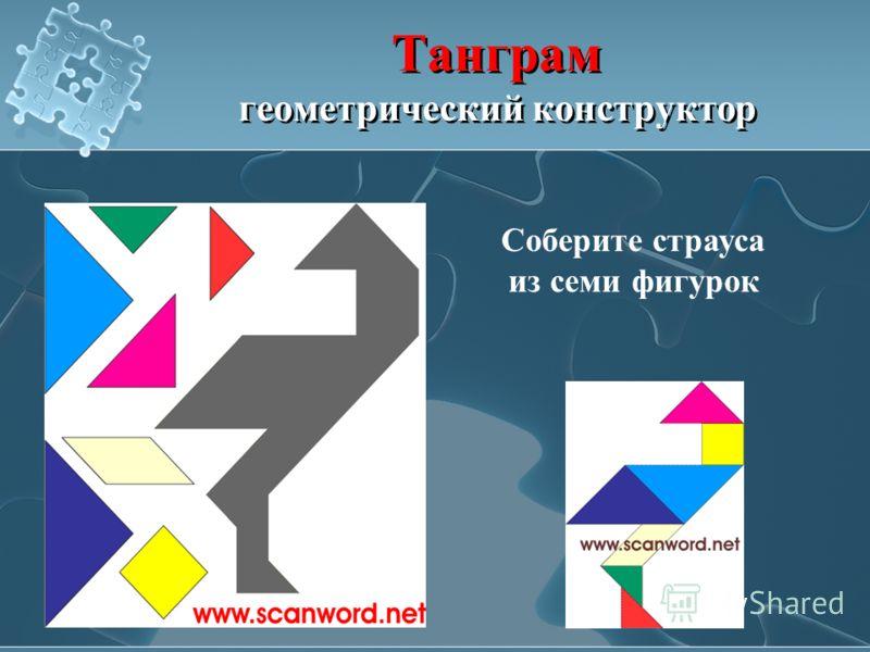 Танграм геометрический конструктор Соберите страуса из семи фигурок