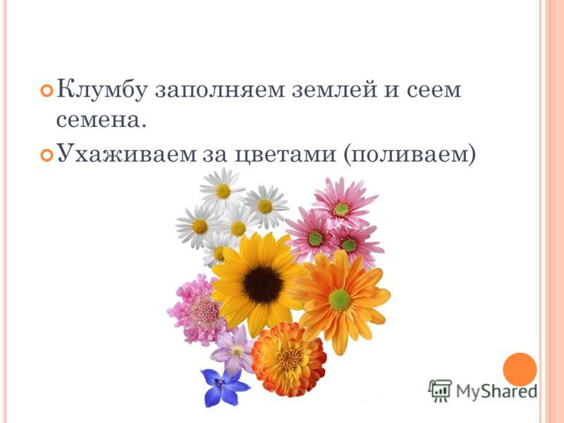 Клумбу заполняем землей и сеем семена. Ухаживаем за цветами (поливаем)