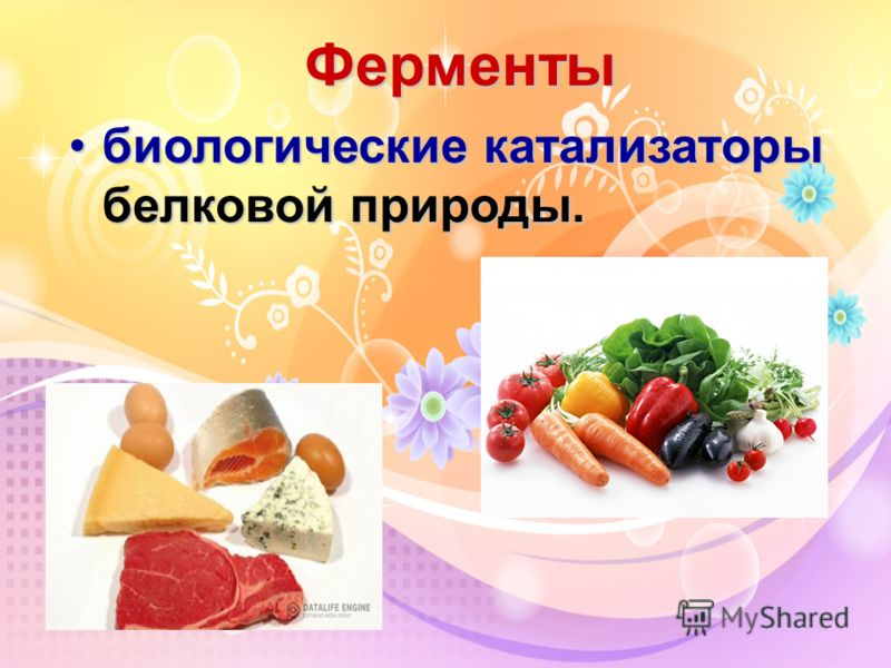 Ферменты биологические катализаторы белковой природы.биологические катализаторы белковой природы.