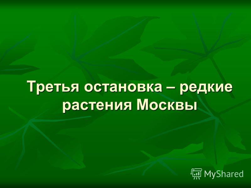Третья остановка – редкие растения Москвы