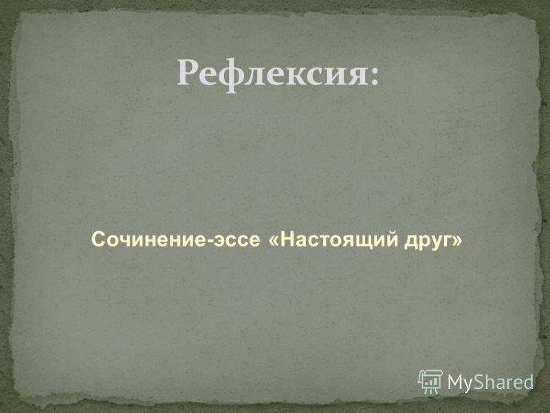 Сочинение-эссе «Настоящий друг» Рефлексия: