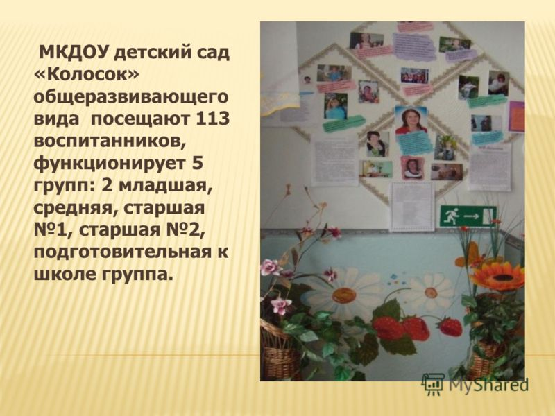 МКДОУ детский сад «Колосок» общеразвивающего вида посещают 113 воспитанников, функционирует 5 групп: 2 младшая, средняя, старшая 1, старшая 2, подготовительная к школе группа.