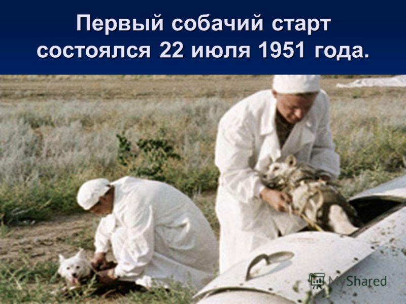 Первый собачий старт состоялся 22 июля 1951 года.