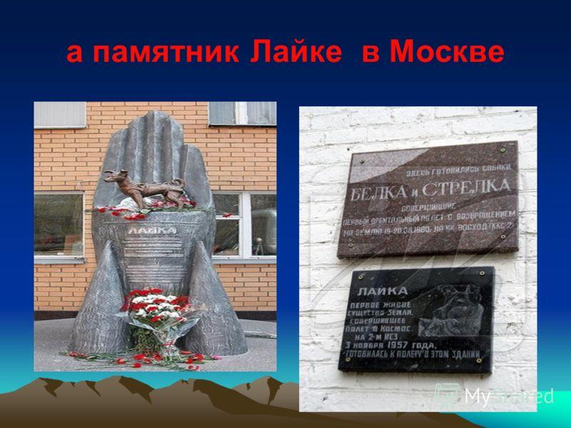 а памятник Лайке в Москве
