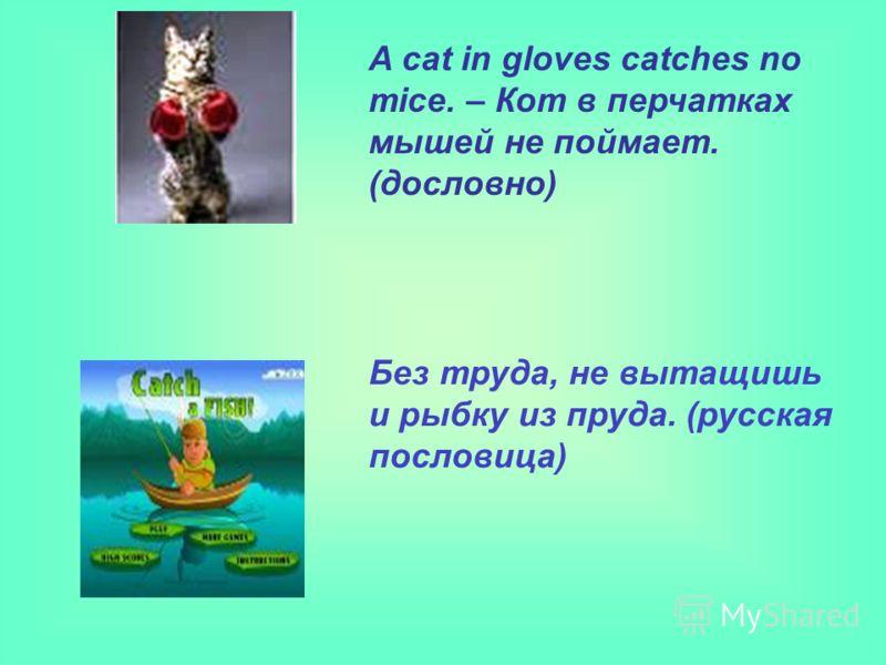 Без труда, не вытащишь и рыбку из пруда. (русская пословица) A cat in gloves catches no mice. – Кот в перчатках мышей не поймает. (дословно)