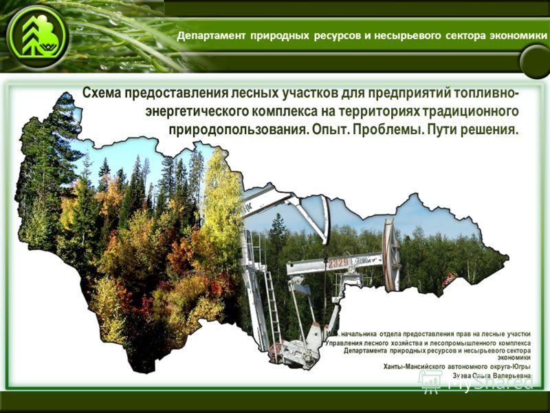 Департамент природных ресурсов и несырьевого сектора экономики
