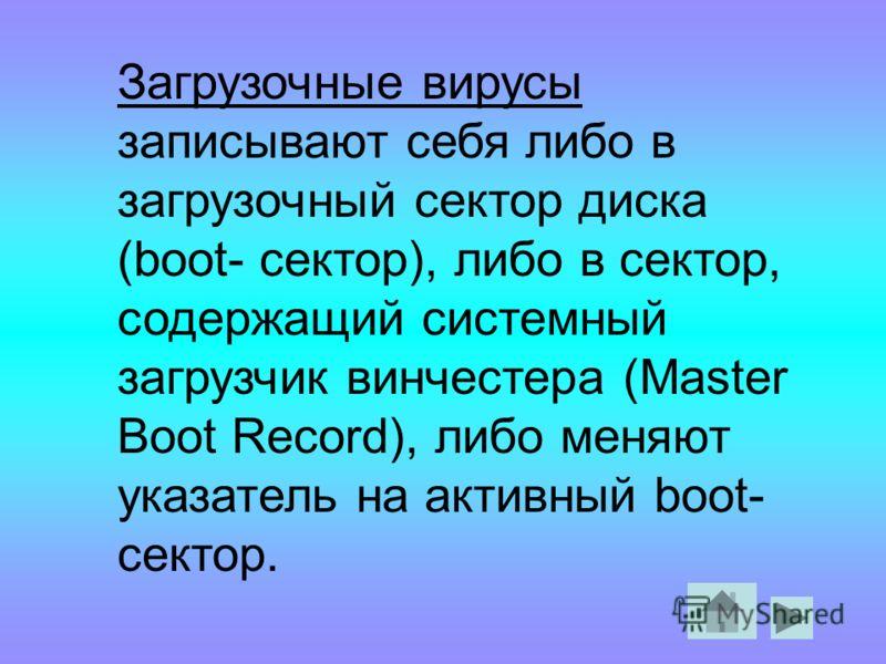 Загрузочные вирусы записывают себя либо в загрузочный сектор диска (boot- сектор), либо в сектор, содержащий системный загрузчик винчестера (Master Boot Record), либо меняют указатель на активный boot- сектор.