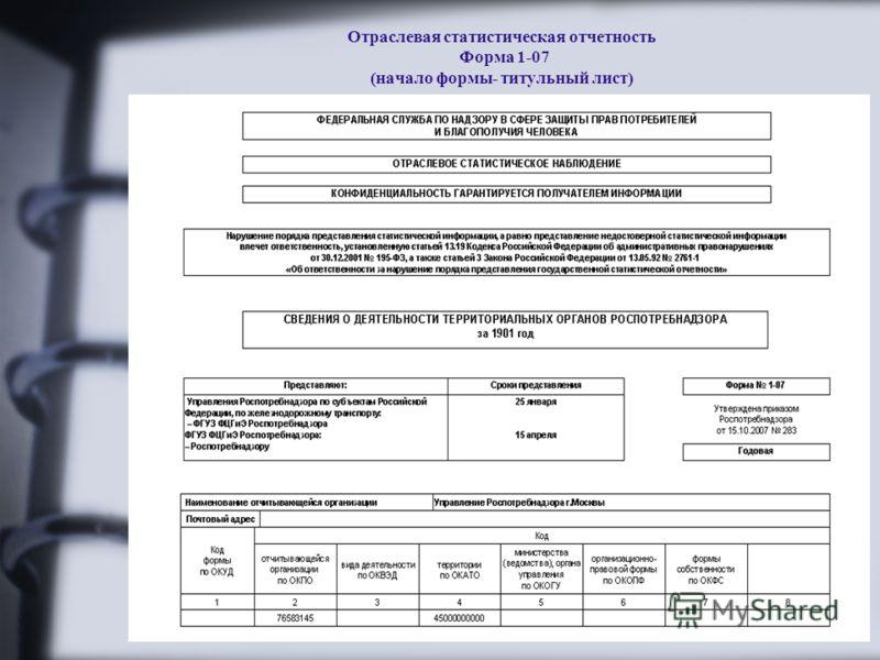 Отраслевая статистическая отчетность Форма 1-07 (начало формы- титульный лист)