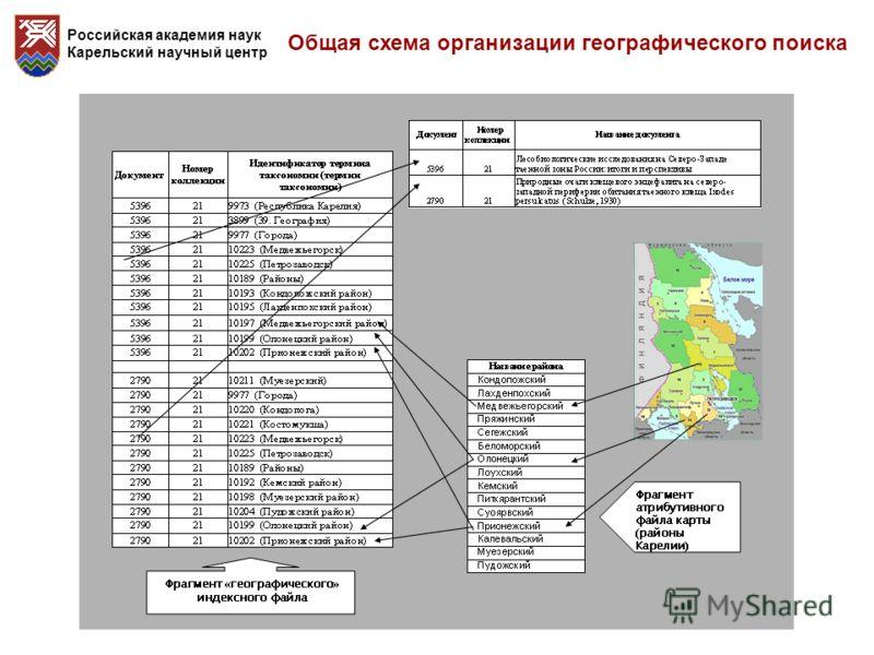Российская академия наук Карельский научный центр Общая схема организации географического поиска