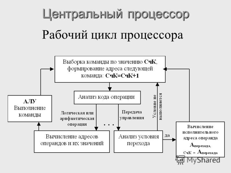 Центральный процессор Рабочий цикл процессора