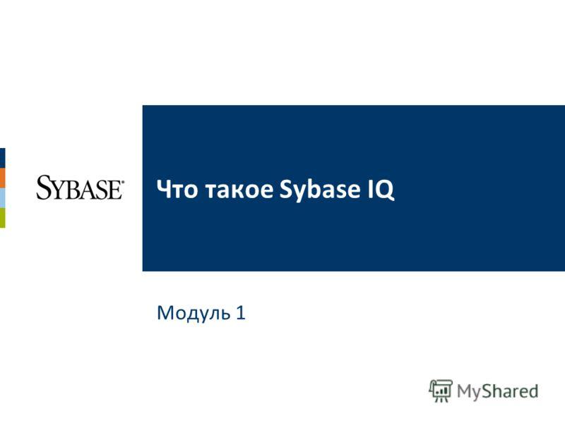 Модуль 1 Что такое Sybase IQ