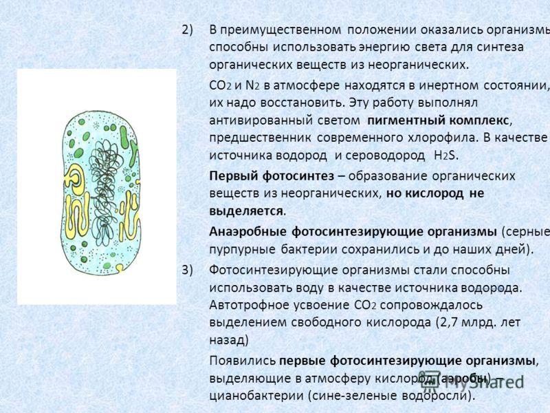 2)В преимущественном положении оказались организмы способны использовать энергию света для синтеза органических веществ из неорганических. CO 2 и N 2 в атмосфере находятся в инертном состоянии, их надо восстановить. Эту работу выполнял антивированный