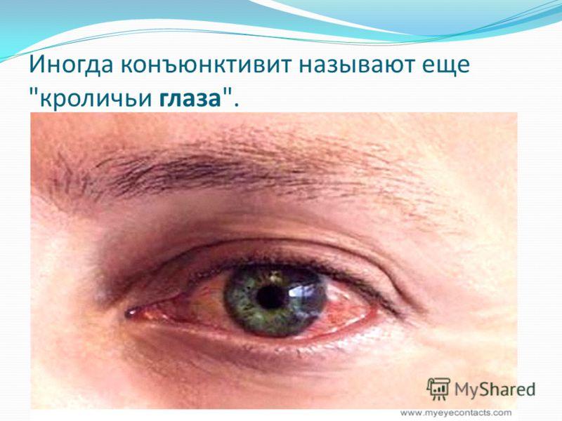 Иногда конъюнктивит называют еще кроличьи глаза.