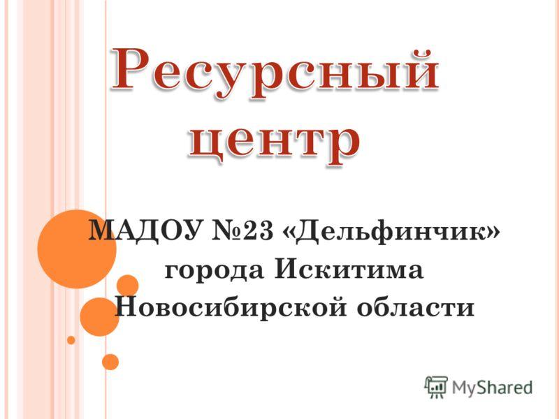 МАДОУ 23 «Дельфинчик» города Искитима Новосибирской области