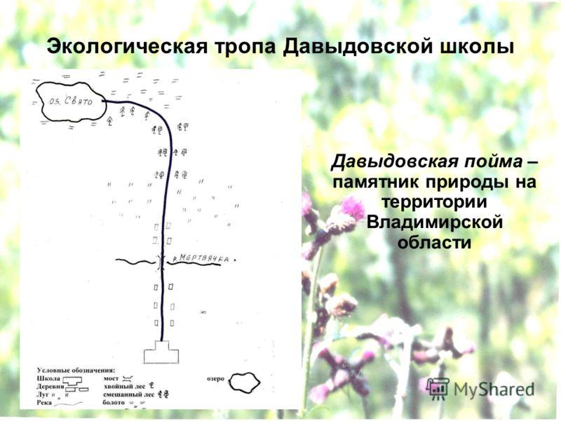 Экологическая тропа Давыдовской школы Давыдовская пойма – памятник природы на территории Владимирской области