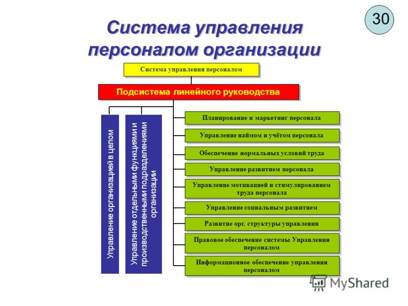 30 Система управления персоналом организации Подсистема линейного руководства Система управления персоналом Управление организацией в целом Управление отдельными функциями и производственными подразделениями организации Планирование и маркетинг персо