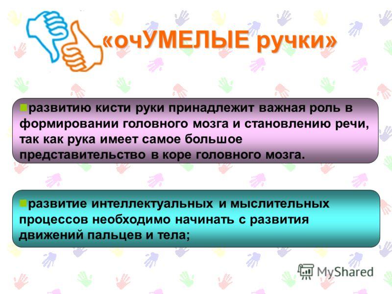 «очУМЕЛЫЕ ручки» развитие интеллектуальных и мыслительных процессов необходимо начинать с развития движений пальцев и тела; развитию кисти руки принадлежит важная роль в формировании головного мозга и становлению речи, так как рука имеет самое большо