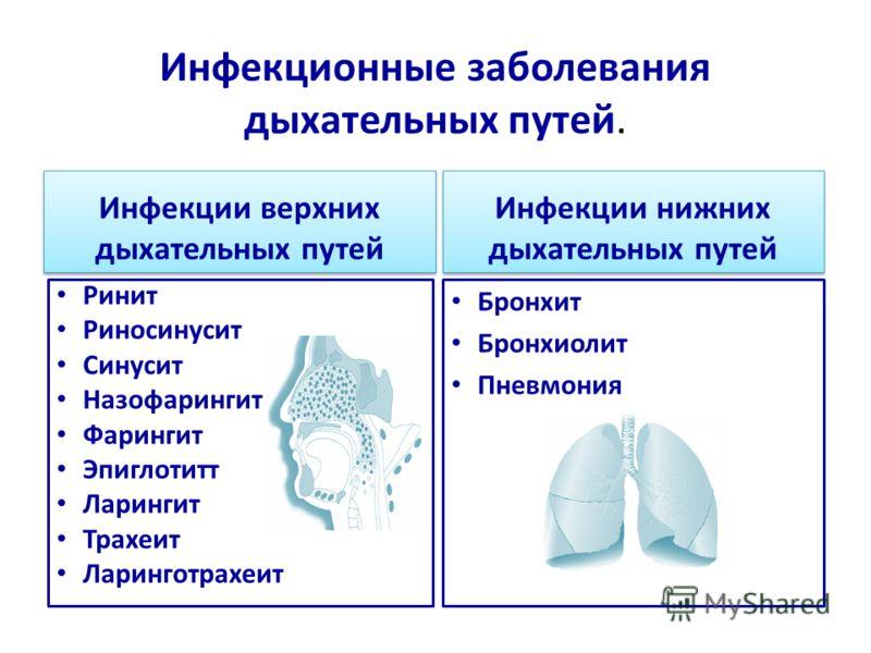 Инфекционные заболевания дыхательных путей. Инфекции верхних дыхательных путей Инфекции нижних дыхательных путей Ринит Риносинусит Синусит Назофарингит Фарингит Эпиглотитт Ларингит Трахеит Ларинготрахеит Бронхит Бронхиолит Пневмония