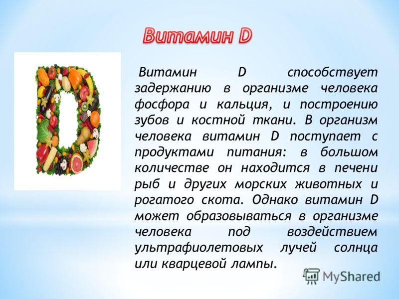 Витамин D способствует задержанию в организме человека фосфора и кальция, и построению зубов и костной ткани. В организм человека витамин D поступает с продуктами питания: в большом количестве он находится в печени рыб и других морских животных и рог