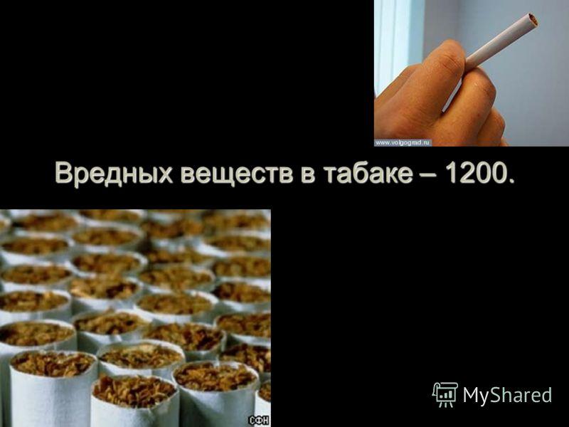 Вредных веществ в табаке – 1200.