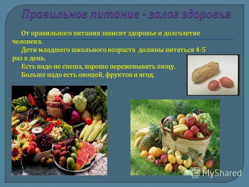 От правильного питания зависит здоровье и долголетие человека. Дети младшего школьного возраста должны питаться 4-5 раз в день. Есть надо не спеша, хорошо пережевывать пищу. Больше надо есть овощей, фруктов и ягод.