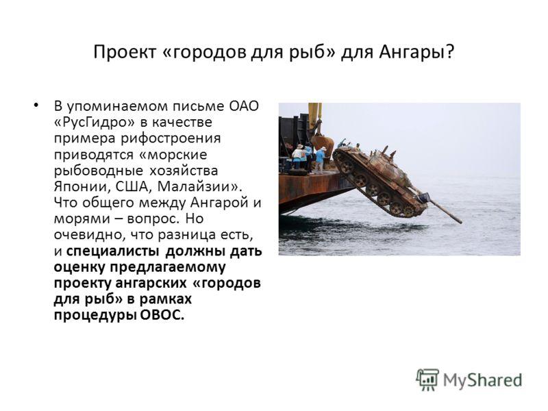 Проект «городов для рыб» для Ангары? В упоминаемом письме ОАО «РусГидро» в качестве примера рифостроения приводятся «морские рыбоводные хозяйства Японии, США, Малайзии». Что общего между Ангарой и морями – вопрос. Но очевидно, что разница есть, и спе